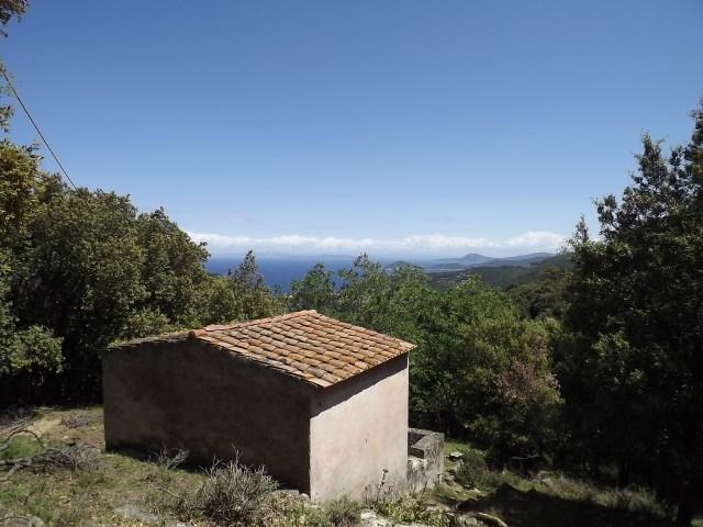 Vendita isola d 39 elba for Case livorno con giardino